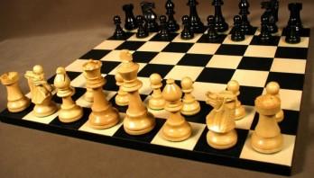 Відкритий обласний турнір з шахів пам'яті Степана Попеля запрошує до участі