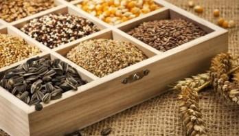 Аграрії області можуть отримати відшкодування за придбання насіння сільськогосподарських рослин