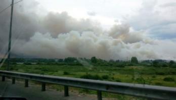 Що необхідно знати про торф'яні пожежі