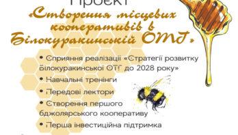 «Створення місцевих кооперативів в БілокуракинськійОТГ»
