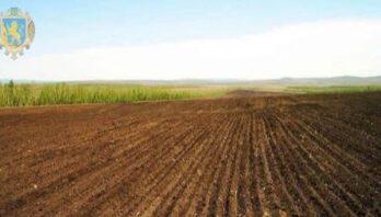 З початку року до місцевих скарбниць на Львівщині надійшло 185,9 мільйона гривень плати за землю