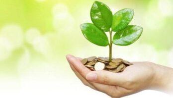Майже 43 мільйони: облрада розподілила гроші обласного фонду охорони навколишнього природного середовища на 2020-ий рік