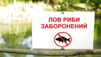 Про встановлення весняно-літньої заборони на лов риби, інших водних біоресурсів