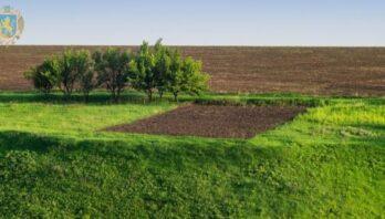 25 червня відбудуться земельні аукціони з продажу права оренди земельних ділянок державної власності