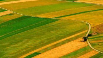 До уваги ОТГ: окремі аспекти земельної реформи