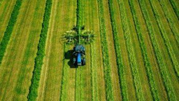 Обсяг сільськогосподарського виробництва на Львівщині зріс на 5,5%