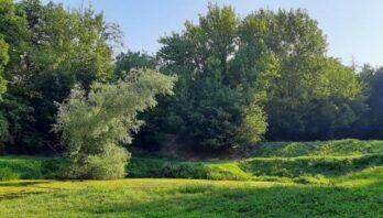 Площу Снопківського парку збільшили на 11 га – рішення Львівської облради