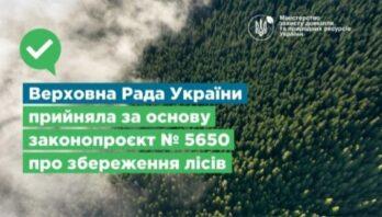 Верховна Рада України прийняла за основу законопроєкт №5650 про збереження лісів
