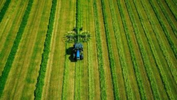 До уваги аграріїв: земельний аукціон з продажу права оренди відбудеться 30 вересня