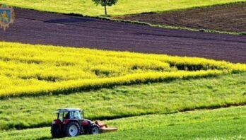 До уваги аграріїв: 1 жовтня відбудеться аукціон з продажу прав оренди землі