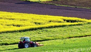 До уваги аграріїв: запрошуємо взяти участь в земельному аукціоні з продажу прав оренди