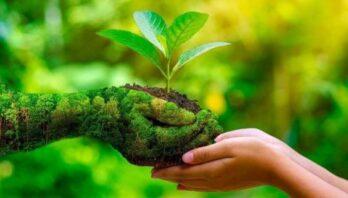 Департамент екології та природних ресурсів приймає запити для формування проєкту Переліку природоохоронних заходів фінансування