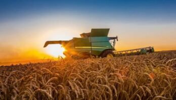 Понад 4 млн грн отримають сільгоспвиробники в межах обласної програми підтримки сільського господарства