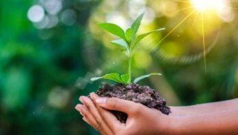Представників громадськості, бізнесу та науковців запрошують на семінар щодо захисту природи
