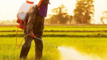 Використану тару з-під пестицидів і агрохімікатів можна безкоштовно утилізувати